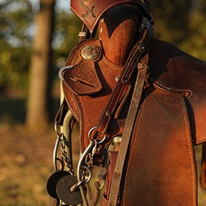 Leather Headstall SH Pro Series Tack